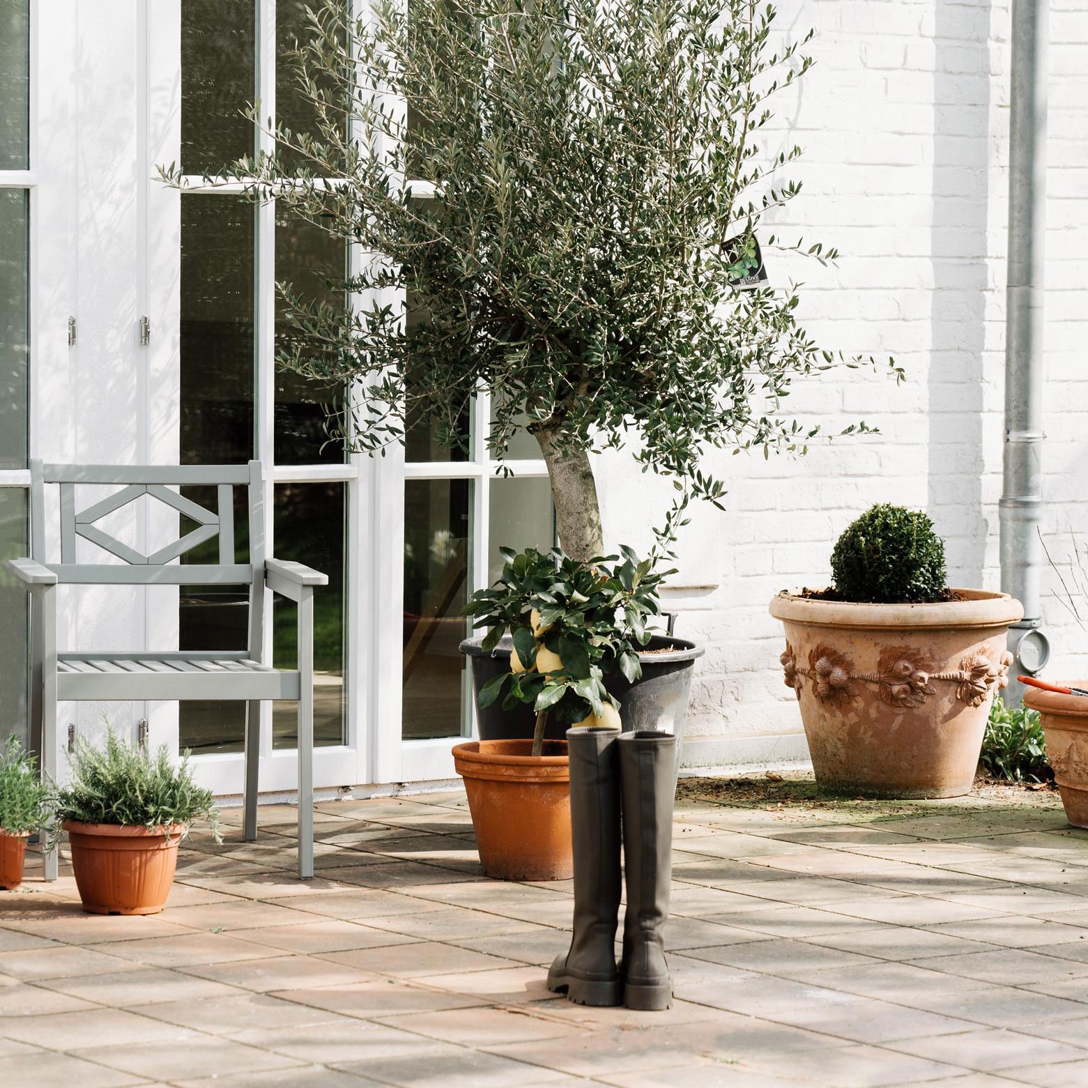 media/image/kaell-gartengestaltung-terrasse.jpg